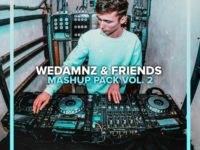WeDamnz & Friends Mashup Pack Vol. 2